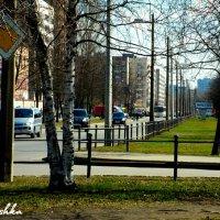 Колпино :: Мария Путина