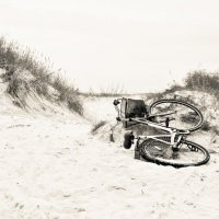 Dune :: Roman Barinov