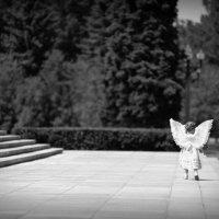 Ангел :: Антон Наталин