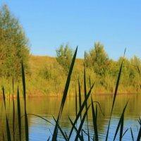 Река Пошла :: Вероника Егорова