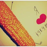 Я люблю кукурузу :) :: dristuida .