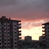 Зимнее небо :: Elena Balatskaya