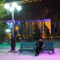 Вечер перед новым годом) :: Таня Харитонова