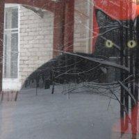 а за вашим окном - зима... :: Лада Котлова