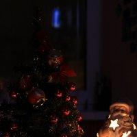 Всем нового года, господа:) :: Дарья Воропаева
