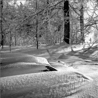 Начало зимы :: Александр Семенов
