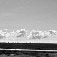 Черно-белый этюд :: Валерий Оболенский