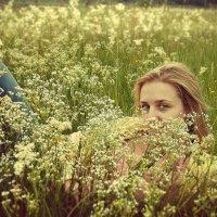 в поле :: Любовь Морец