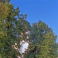 Храм Покрова на Нерли. :: Яков Реймер