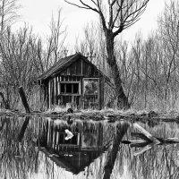 Заброшенный домик. :: Frol Polevoy