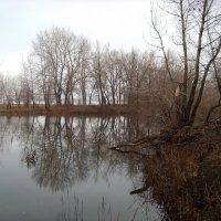 Осенний пейзажъ :: Dr. Olver