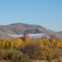 Остаточный туман в горах. :: Наталья Иванова