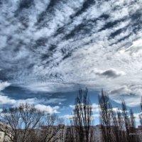 Вид Из окна :: Эдуард Аверьянов