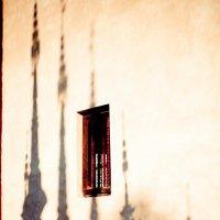 Crawling shadows :: Eva Langue