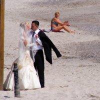 Морская свадьба :: Александр Скамо