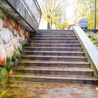 Чудо-лестница :: Илья Спицын