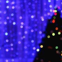 новогоднее настроение :: Ксения Сутырина