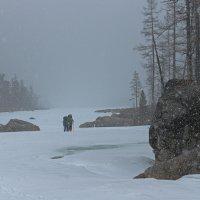 Снег, снег, снег, снег.... :: Алексей Видов