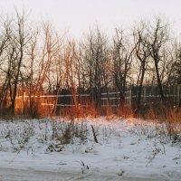 Хорошо зимой в деревне :: Sergey Popoff
