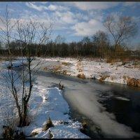 У зимней реки (1) :: Диана Буглак