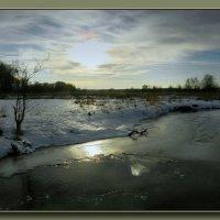 У зимней реки (2) :: Диана Буглак