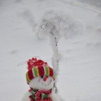 Снеговичок на отдыхе!!! :: Марина Демьяненко
