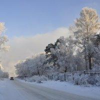 Зимняя дорога :: Марина Демьяненко