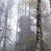 Страж в тумане. :: Наталья Иванова