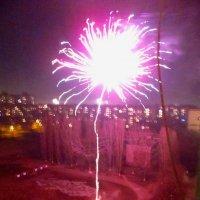 Новогодний Цветок :: AV Odessa