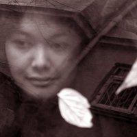 осеннее настроение :: Наталия Белогур