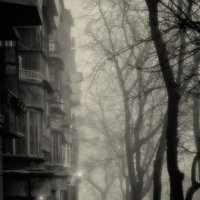Туманный день... :: Олег Куцкий