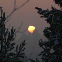 Морозный вечер 1 :: Алексей Деменев