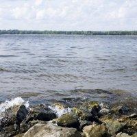 Волжская вода :: Владимир Немцев