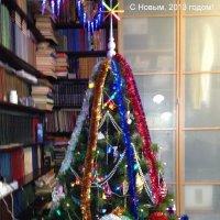 Елка домашняя! :: Александр Липовецкий