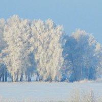 Зимнее утро :: Димарик Лакман