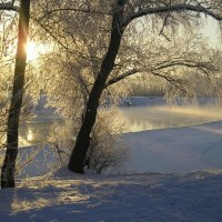 Зимнее солнце :: Нина Костина