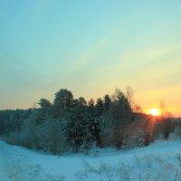 восход над лесом :: Александр Маликов