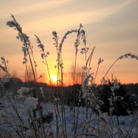 холодный закат :: Александр Маликов