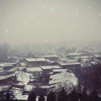 1 января 2013 г. в Ташкентской деревушке :: Артур Абдурахманов