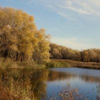 Осенний пейзаж :: Александр Жабров