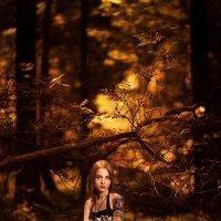 Осень :: Den Korolev
