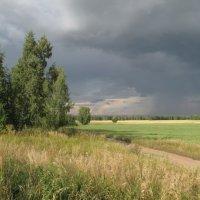 Дождь надвигается :: Валентина Хазова