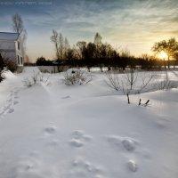 """деревня """"Дрочево"""" :: Артём Толокнов"""