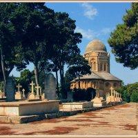 Старое кладбище Та'Браксия :: Евгений Печенин