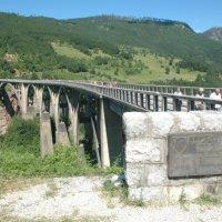 Мост на Тари :: Алексей Деменев