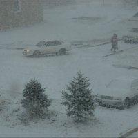 Снежок посыпал. :: Валентин Репин