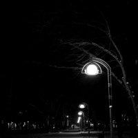 Ночь. Улица. Фонарь :: Ильназ Габбасов