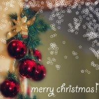 Счастливого Рождества!!! :: Irina Evushkina