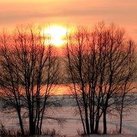 закат на озере Плещеево :: Александр Маликов