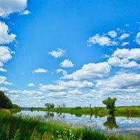 Летний пейзаж :: Иван Носов